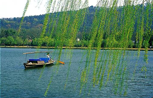 杭州西湖风景 - 老排长 - 老排长(6660409)