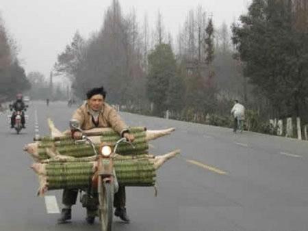 纯粹中国功夫 - 老排长 - 老排长(6660409)